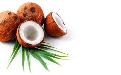 Cocolok: fibra de coco para colchones